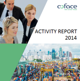 PIC ACTIVITY REPORT 2014
